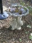 Interesting bird bath